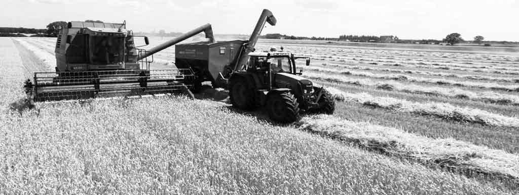 Leasing w rolnictwie i gospodarce leśnej – co warto wiedzieć?