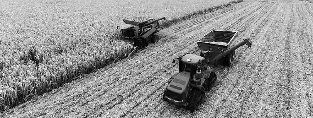 Ogłoszenia poleasingowe na maszyny rolnicze i leśne